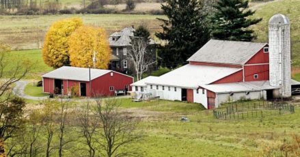 Amish Etiquette Ohio S Amish Country