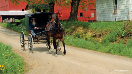 Amish-transportation