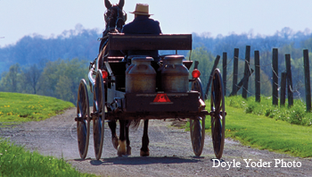 Amish-wedding-Doyle-Yoder