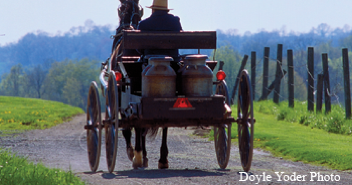 Amish Wedding Traditions Ohio S Amish Country