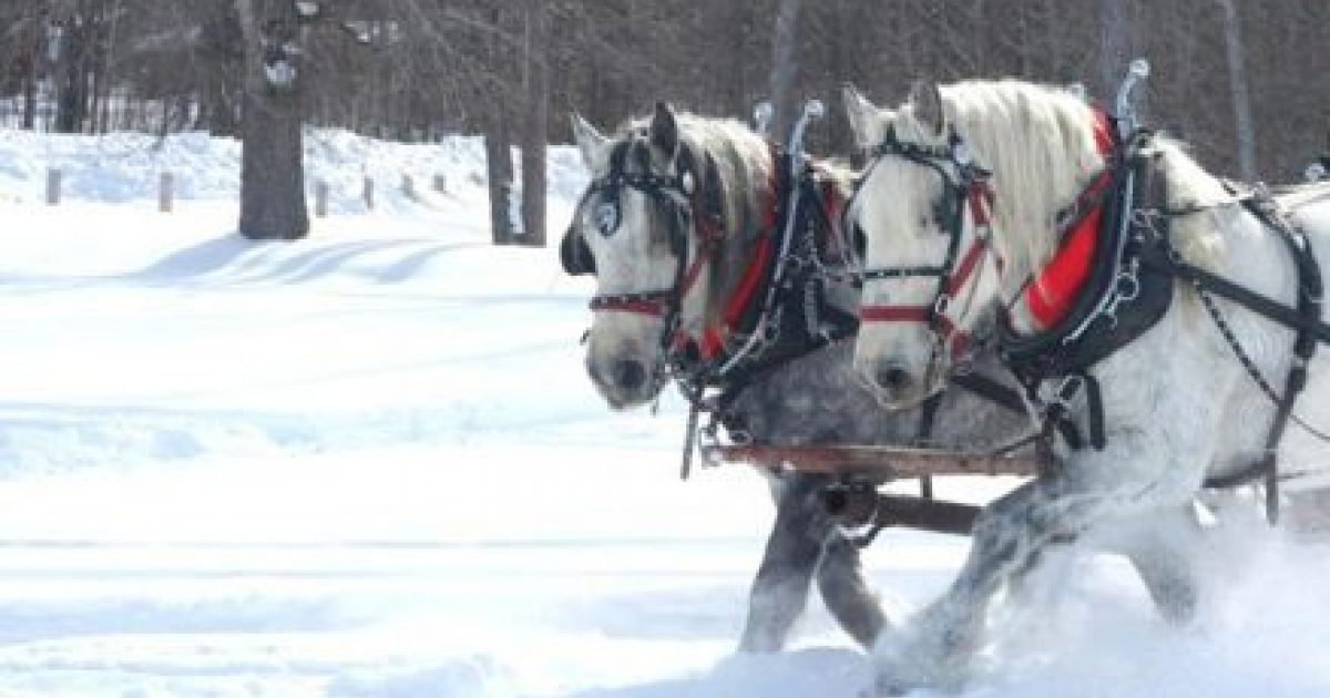 An Old Fashioned Winter Ohio S Amish Country