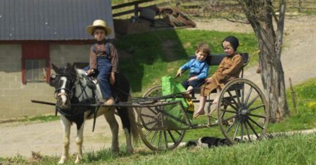 The Health Of The Amish Ohio S Amish Country
