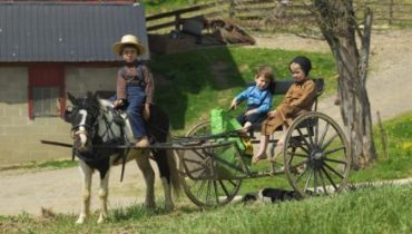 The health of the Amish