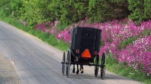 The traditional Amish youth period of Rumspringa
