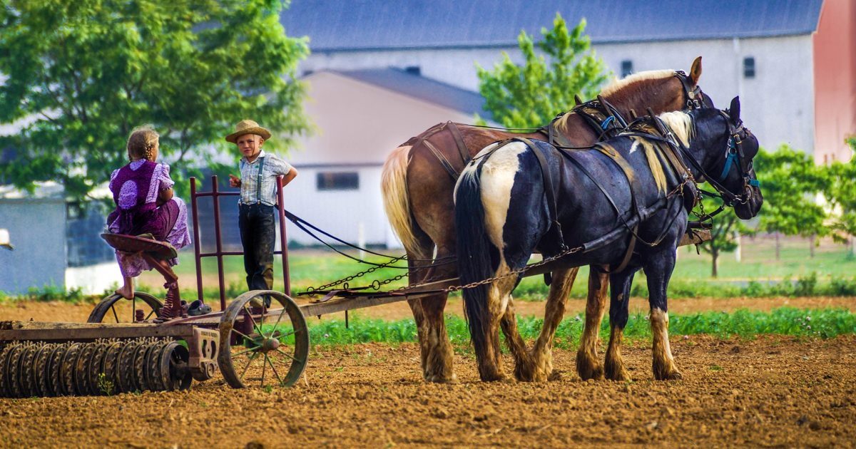 Middlefield Ohio S Amish Country