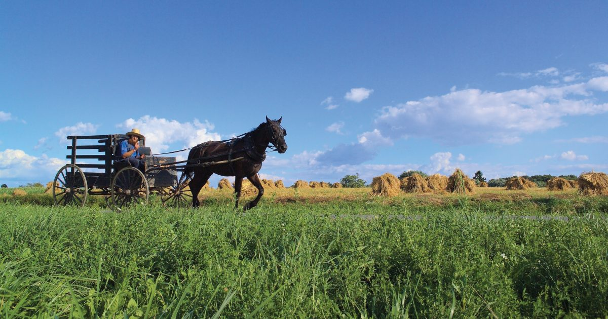 Danville Ohio S Amish Country