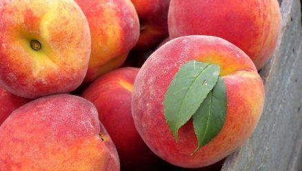 Easy Amish Peach Pie